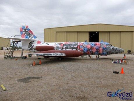 Çılgın Uçak Tasarımları