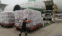 BAE ve Çin'den İran'a tıbbi malzeme yardımı