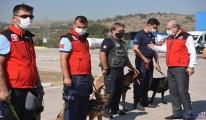 Balıkesir'de  İtfaiyesi'nin K9 köpekleri eğitiliyor
