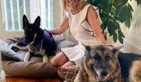 Biden'ın köpeği 'Major' Beyaz Saray'ı birbirine kattı