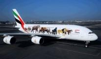 Emirates, 'Yasadışı Yaban Hayatı Ticaretine Karşı' video
