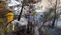 Ezine'de orman yangını