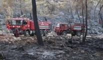 Fethiye'de yerleşim yerinde yangın çıktı#video
