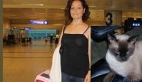 Atatürk Havalimanında kaybolan kedisini arıyor