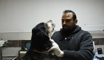 'Hayvandan insana, insandan hayvana koronavirüs geçmez'