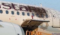 Arılar Havalimanı'nda yolcu uçağını istila etti(video)