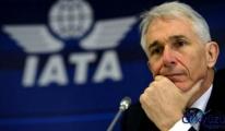 IATA, Gelir Ve Kâr Oranını Revize Etti .