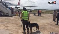 İstanbul Havalimanı'na köpek terminali!video