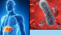 Kansere kadar gidebilen sinsi hastalık: Hepatit C
