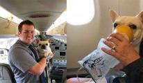 Köpeği oksijen maskesi kurtardı!