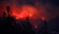 Kozan'da ormanlık alanda yine yangın çıktı(video)