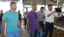 Lüleburgaz'daki Süt Sığırcılığı İşletmelerine Aktarıyor