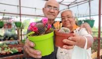 video#Kanseri eşi için 1200 kaktüslü hobi bahçesi kurdu