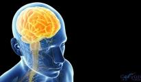 Neden beyin çekap yaptırılmalıyız?