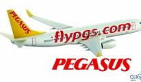 Pegasus'a Avrupa iş ödülü