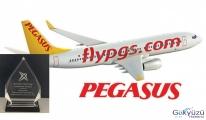 Pegasus'a Uluslararası Ödül