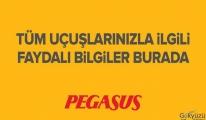 Pegasus tüm uçuşlarını durdurdu!Açıklama yaptı!