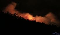 Pozantı'daki orman yangını gece de devam etti