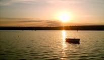 Mogan Gölü oksijensizlikten ölmeye başladı