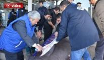 Kanser Hastalarına Köpek Balığı Dağıttı