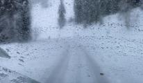 Şavşat'ta 38 köy yolu kar nedeniyle kapandı(video)