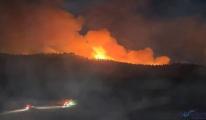 Sinop'ta 2 ilçedeki ormanlık alanlarda yangın