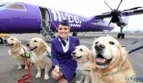 Şirketin birçok uçağı havalimanı'nda rehin kaldı