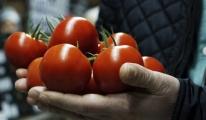 Sivri Biber, Patlıcan Ve Salatalığa Zam Kapıda