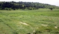 Tarımın Sigortasından Üreticiye 850 Milyon TL Ödeme