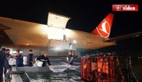 THY Cargo, İzmir'den Umman'a Canlı Balık Taşıdı