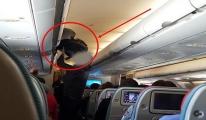 THY hırsızlık olayında uçağa polis çağırmadı!