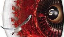 THY Uçağının Motoruna Kuş Sürüsü Girdi