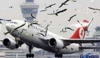 Üçüncü Havalimanına Kuş Ayarı...