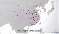 video Dünya, Çin'e uçuşları durduruyor!