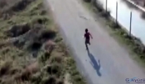 (video)İlk defa gördüğü drondan kaçtı
