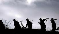 Yakalanan Üst Düzey PKK'lı Yönetici Kim?