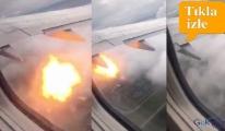 Yolcu uçağı kaz sürüsüne daldı!