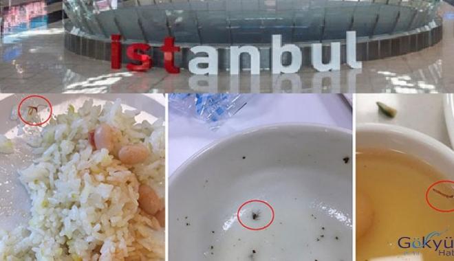 AHA! İstanbul Havalimanı'nda gene yemekten böcek çıktı