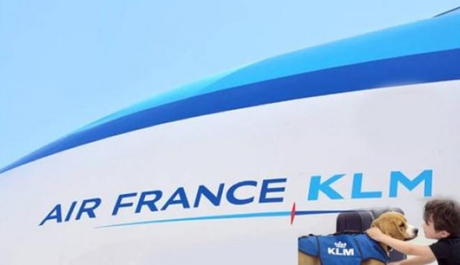 Air France-KLM evlendi
