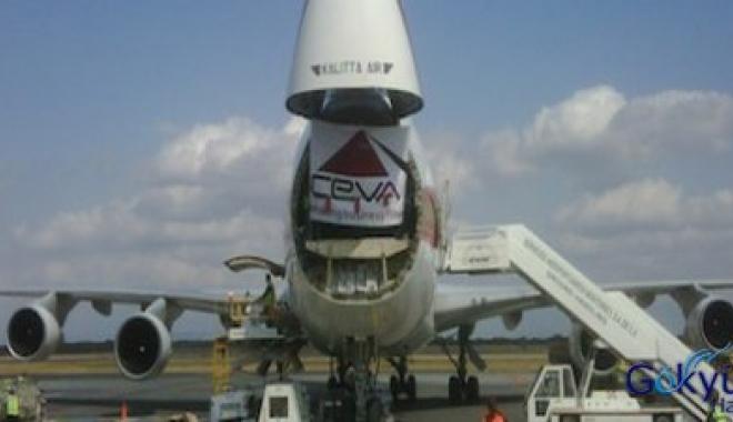 CEVA Ve IATA Çevre İçin İmza Attı