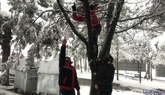 #Dron, sert rüzgârın etkisiyle ağacın dallarına takıldı