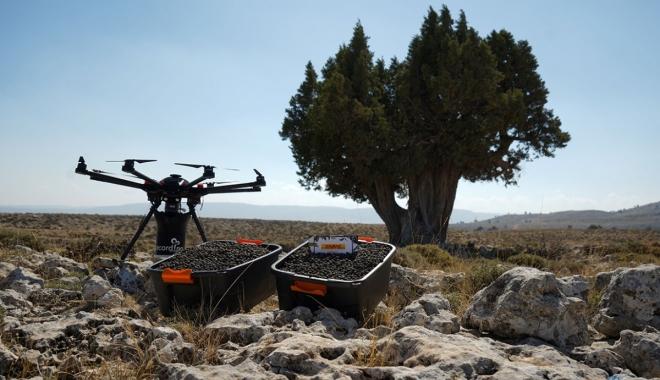 #ecoDrone'lar aracılığıyla 50 bin tohum ağaç olacak(video)