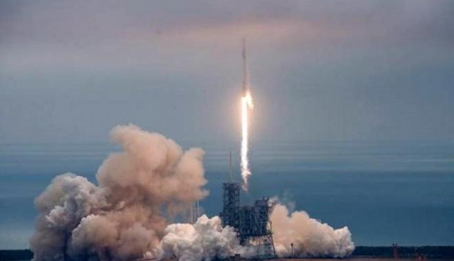 Elon Musk, Uzay İstasyonu'na Karınca ve Avokado Taşıdı