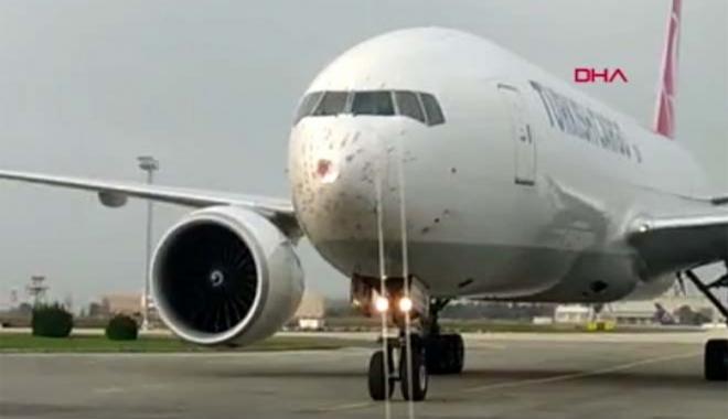 Geçen yıl uçaklara 828 kez kuş çarptı#video