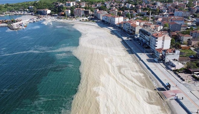 'Marmara Denizi'nde yüzmeye girenler dikkat#video