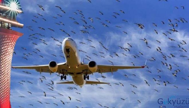 Özdemir,Pas geçme ve kuş çarpma oranları düşük!