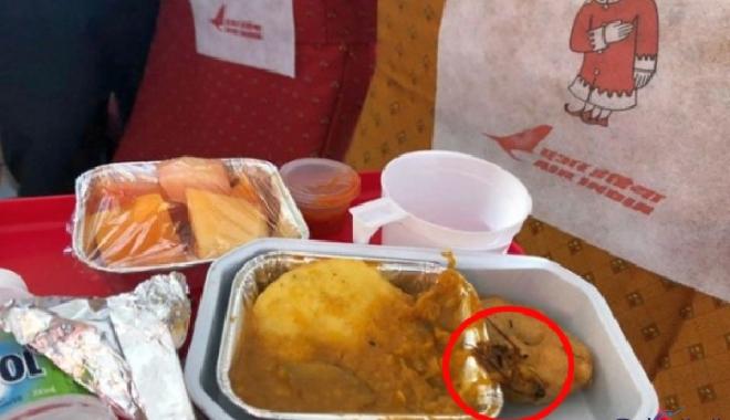 Uçak yemeğinde hamam böceği çıktı!
