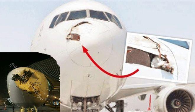 Leylek gören pilotlar birbirini uyarıyor!