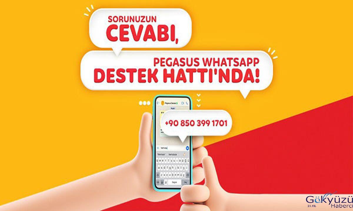 #Pegasus WhatsApp Destek Hattı