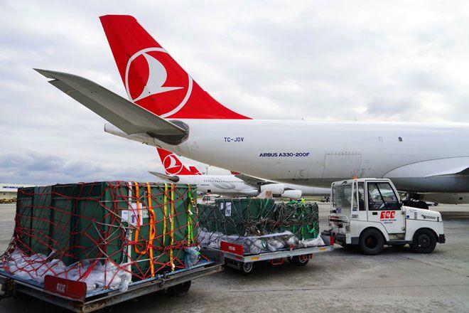 Turkish  Cargo, Yavru Aslan Ve Penguenleri Uçurdu